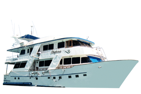 Daphne Galapagos Yacht - Thumbnails