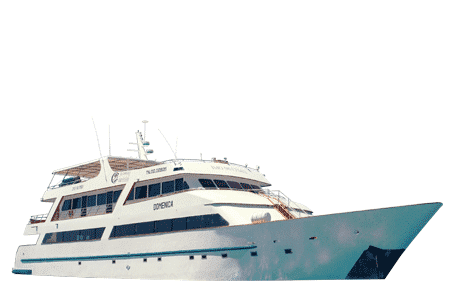 Galapagos Sea Star Journey Yacht - Thumbnails