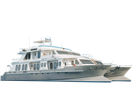 Alya Galapagos Catamaran - Thumbnails