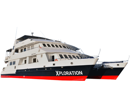 Celebrity Xploration Galapagos Catamaran - Thumbnails