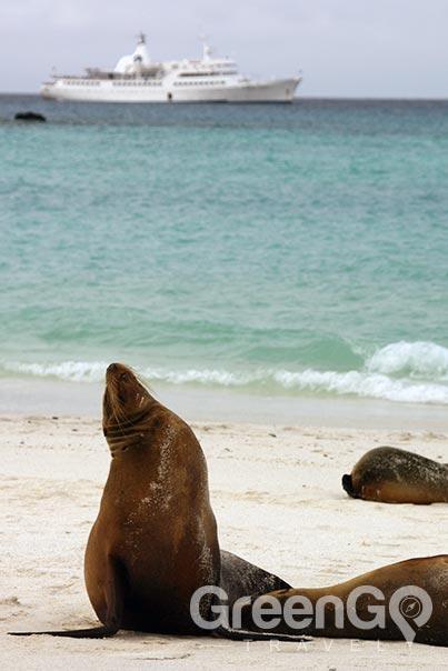 galapagos-vs-caribbean-choose-a-Galapagos-cruise