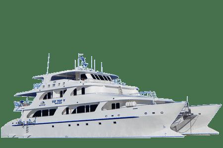 Tip Top 5 Galapagos Catamaran - Thumbnails