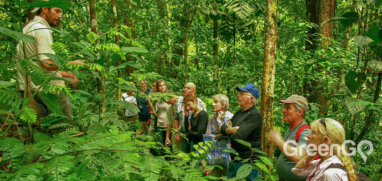 Selina Amazon Tena - Flora Briefing