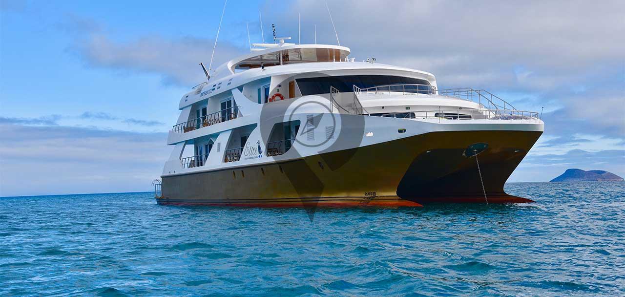 Elite-Galapagos-Catamaran-Elite-Galapagos-Catamaran