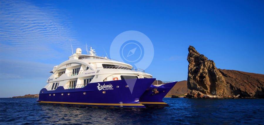 Endemic-Catamaran-specifications-Endemic-Front-Shot