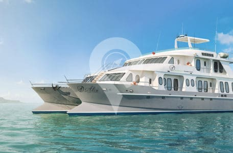 Planning-an-Alya-Cruise-in-2019-Alya-cruise-side-view