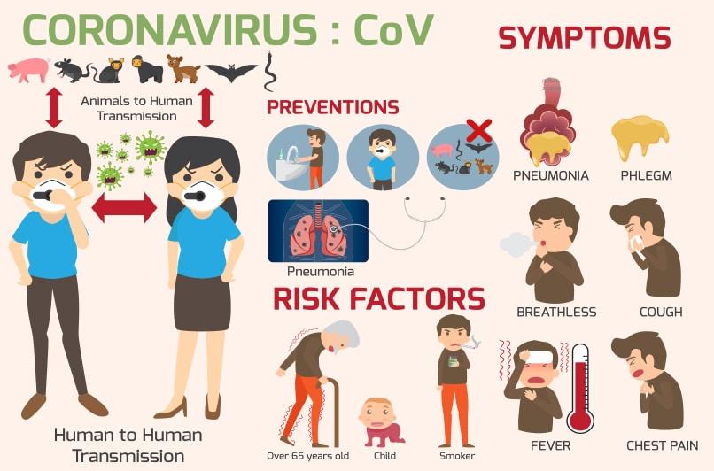 Coronavirus in Galapagos Ecuador and Peru Corona Virus Diagram