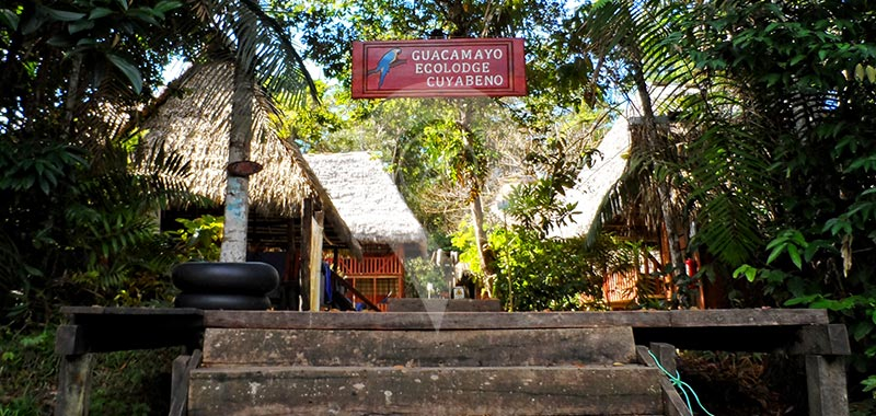 Guacamayo Lodge - Itinerary 5 Days - Day 1