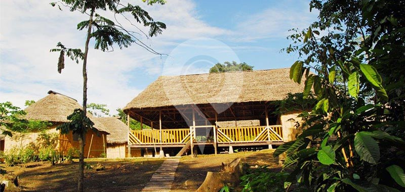 Amazon Dolphin Lodge - Discovering Yasuni - Day 1