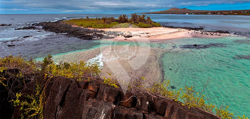 Floreana Island - Galapagos Islands