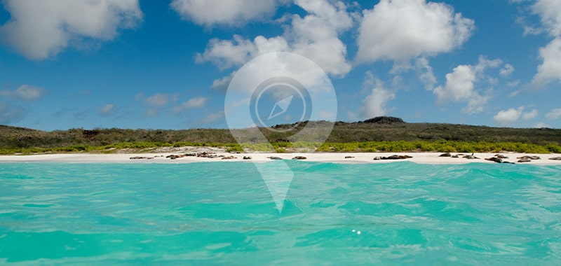 Gardner Bay - Galapagos Islands