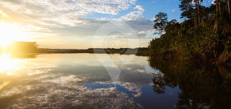 Manatee Amazon Explorer - Day 8