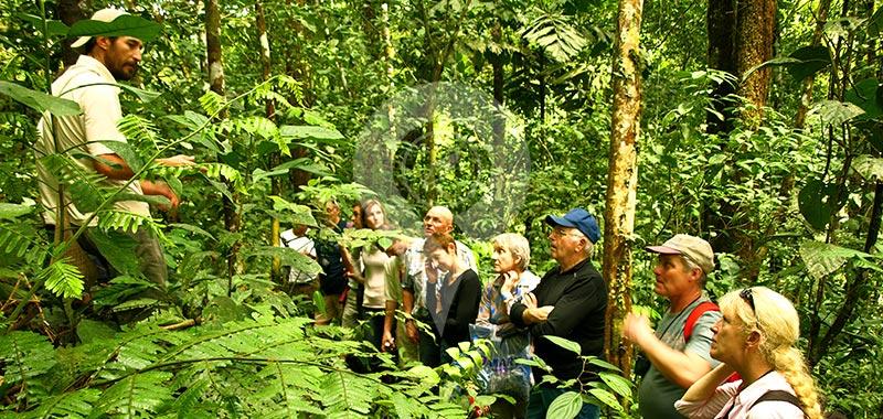 Selina Amazon Tena - Itinerary 3 - Day 1