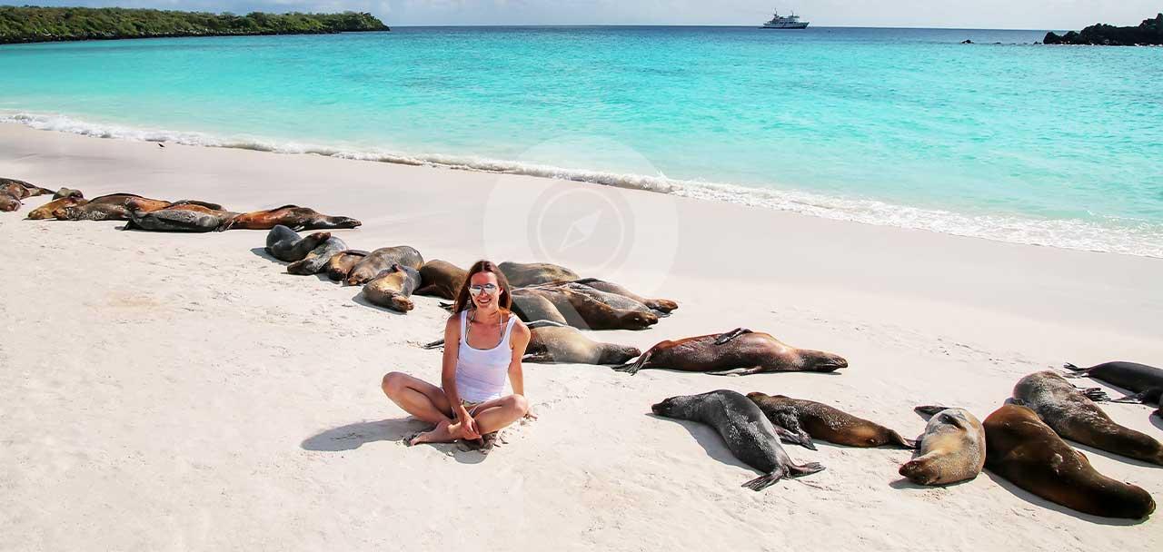 Woman on beach with sea lions sleeping