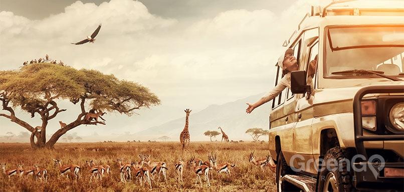 African Safari vs Galapagos Islands 4X4 Vehicle