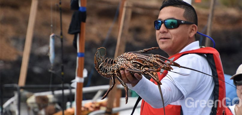 /do-people-live-on-the-galapagos-islands-fisherman-catch-of-the-day